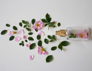 Conférence Le Parfum, une histoire sans fin