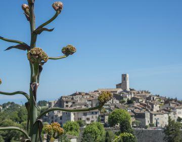 Balade nature & patrimoine à Saint-Paul de Vence