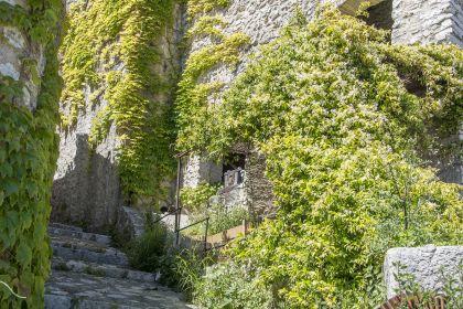 Boucle de Saint-Paul de Vence à Vence par le vallon du Malvan